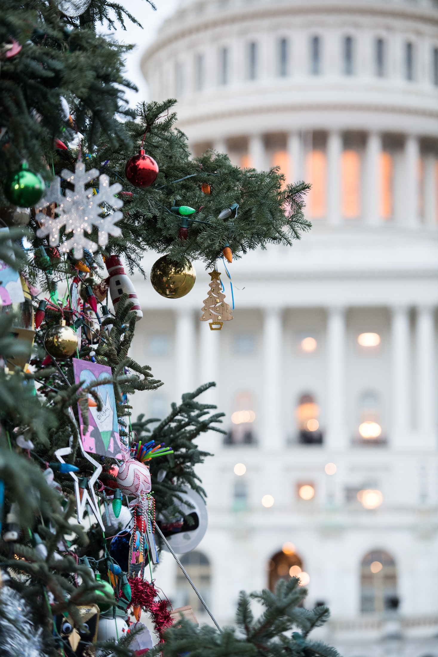 Handmade ornaments decorate the Capitol Christmas Tree