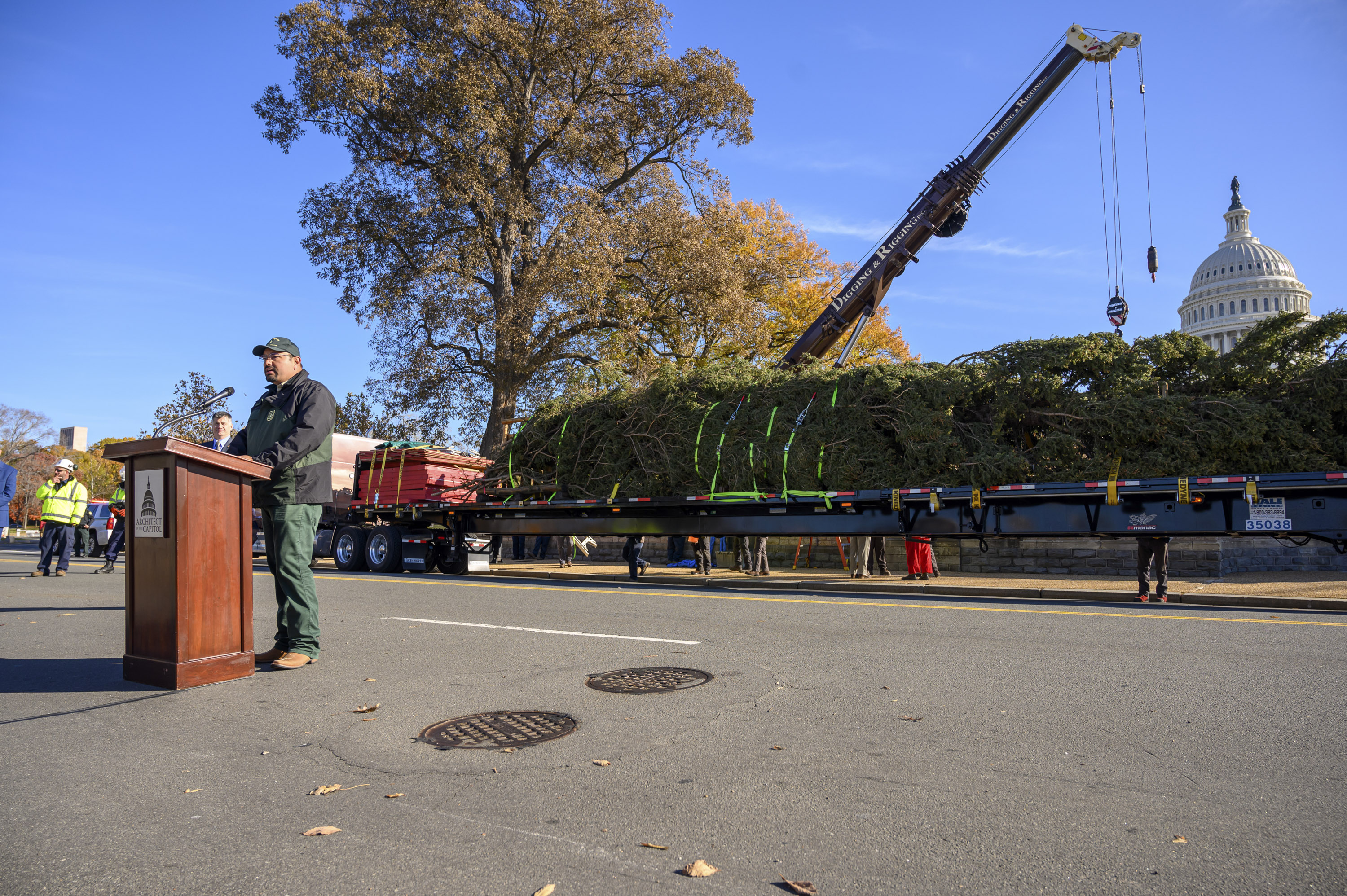"The ""People's Tree"" arrived on Capitol Hill on Monday, November 25. Photo by Ike Hayman."