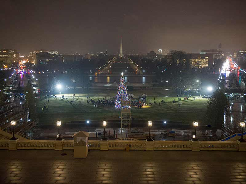 The 80-foot-tall Engelmann Spruce illuminating the West Front Lawn of the U.S. Capitol